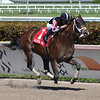 Recruiting Ready wins the 2019 Gulfstream Park Sprint<br /> Coglianese Photos