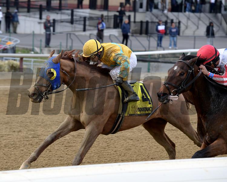 Potomac wins the 2019 More To Tell Stakes at Aqueduct<br /> Coglianese Photos/Joe Labozzetta