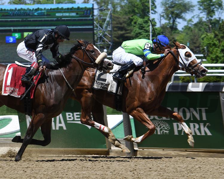 Heavenhasmynikki wins the 2019 Vagrancy Stakes at Belmont Park <br /> Coglianese Photos/Susie Raisher