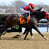 Archumybaby wins the 2019 Videogenic Stakes at Aqueduct<br /> Coglianese Photos/Susie Raisher