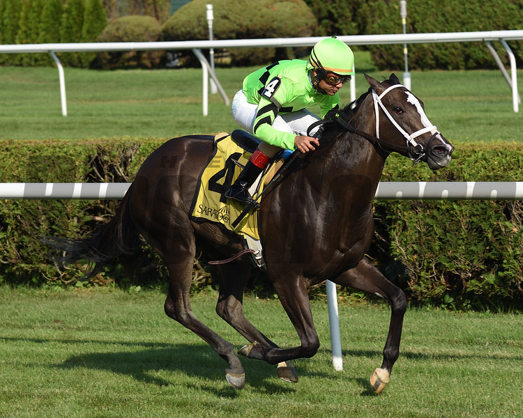 Break Even wins the Coronation Cup Stakes Sunday, July 14, 2019 at Saratoga. Photo: Coglianese Photos/Janet Garaguso