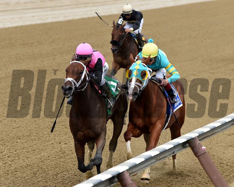 Fierce Lady wins the 2019 Seeking the Ante Stakes<br /> Coglianese Photos/Elsa Lorieul