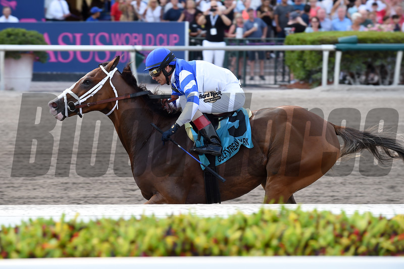 Prince Lucky wins the 2019 Hal's Hope Stakes at Gulfstream Park<br /> Coglianese Photos/Elsa Lorieul