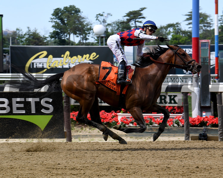 Guarana wins the 2019 Acorn Stakes at Belmont Park<br /> Coglianese Photos/Susie Raisher