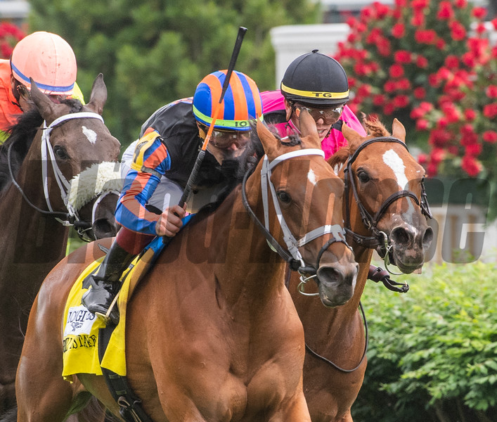 Beau Recall with jockey Irad Ortiz Jr. holds off a charging field to win the 34th running of The Longines Churchill Distaff Turf Mile on the main turf course at Churchill Downs Saturday May 4, 2019 in Louisville, KY.  Photo by Skip Dickstein.