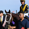 Covfefe wins the 2019  Longines Test Stakes at Saratoga<br /> Coglianese Photos/Susie Raisher