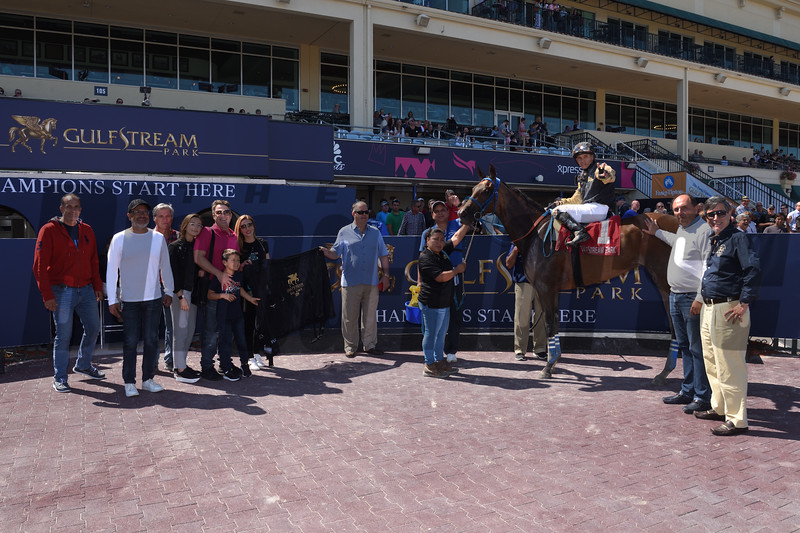 Brunette Princess and Miss Marcela deadheat in the 2019 Any Limit Stakes at Gulfstream Park - Miss Marcela WC<br /> Coglianese Photos