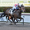 America's Tale wins the 2019 Inside Information at Gulfstream Park<br /> Coglianese Photos/Lauren King
