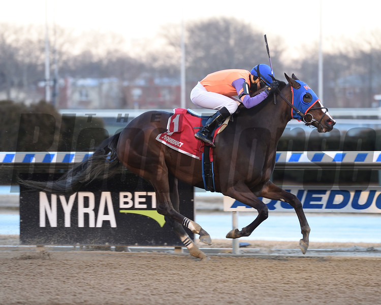Frostie Anne wins the Biogio's Rose Stakes at Aqueduct Sunday, February 10, 2019. Photo: Coglianese Photos/Elsa Lorieul