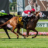 Henley's Joy wins the 2019 Belmont Derby Invitational  <br /> Coglianese Photos/Janet Garaguso
