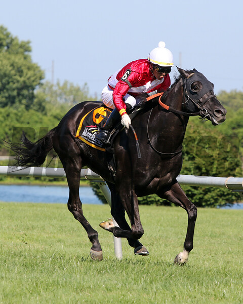 Parlor with Jose Ortiz win The Glasgow Stakes at Delaware Park on July 13, 2019. Photo By: Chad B. Harmon