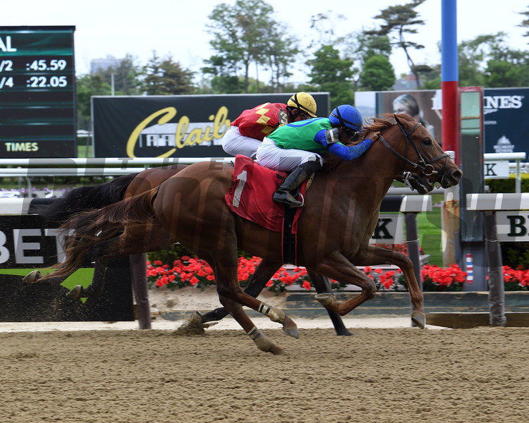 Sky of Hook - Maiden Win, Belmont Park, May 10, 2019<br /> First winner for Tapiture<br /> Coglianese Photos