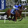 Rinaldi wins the New York Stallion Stakes Wednesday, July 24, 2019 at Saratoga. Photo: Coglianese Photos/Susie Raisher