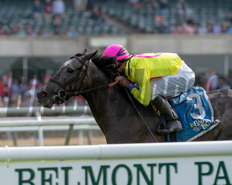 Olympico wins the 2019 Fort Marcy Stakes<br /> Photo: Coglianese Photos/Chelsea Durand