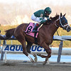 Vino Rosso wins the 2019 Stymie at Aqueduct<br /> Coglianese Photos