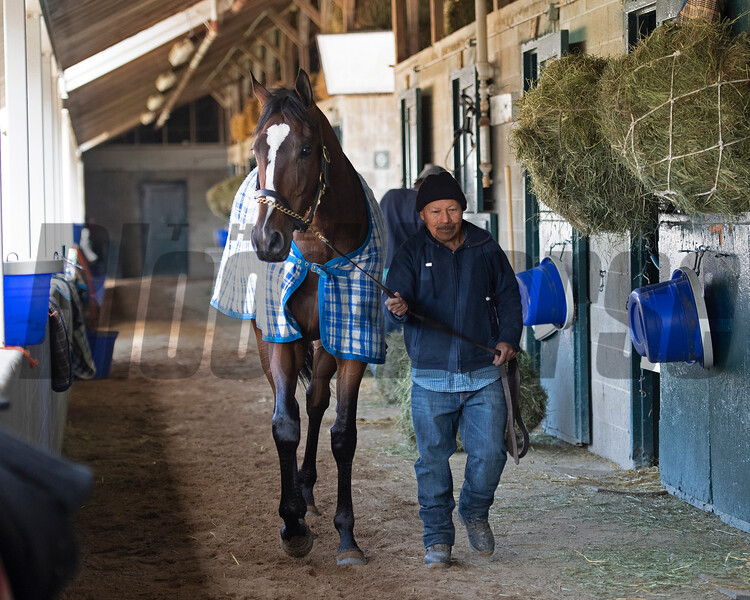 Signalman<br /> Morning sales and racing scenes at Keeneland in Lexington, Ky., on April 4, 2019