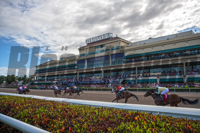 Racing .  @ Gulfstream Park.  March 30 2019<br /> ©JoeDiOrio/Winningimages.biz