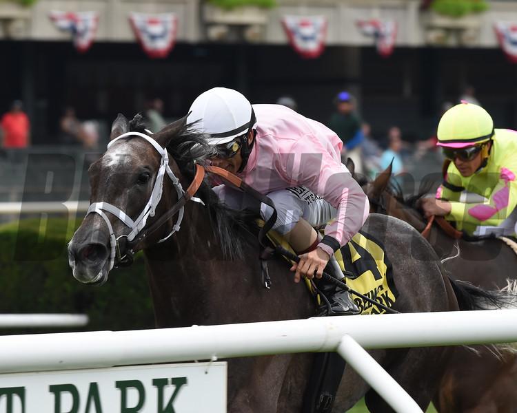 Semper Sententiae wins the 2019 River Memories Stakes at Belmont Park<br /> Coglianese Photos/Chelsea Durand