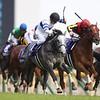 Normcore wins 2019 Victoria Mile at Tokyo Racecourse. Photo: Masakazu Takahashi
