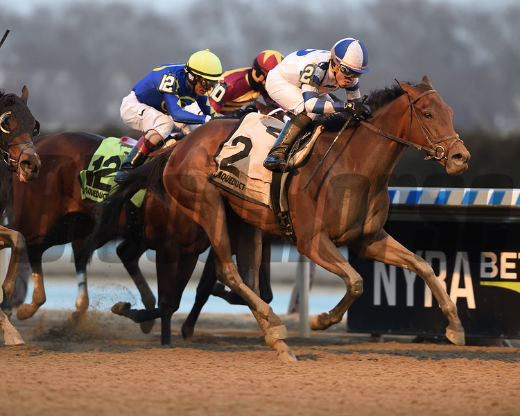 Espresso Shot wins the 2019 Busher Stakes at Aqueduct<br /> Coglianese Photos