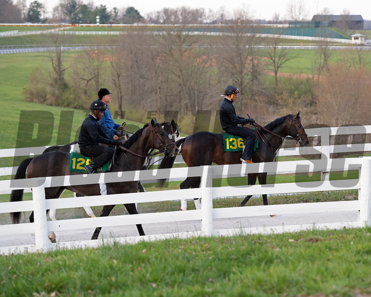 Hips 128 and 136 with Wavertree, Ciaran Dunne (blue)<br /> Morning sales and racing scenes at Keeneland in Lexington, Ky., on April 4, 2019