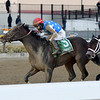 Workaholic wins the 2019 Cicada Stakes at Aqueduct<br /> Coglianese Photos/Joe Labozzetta