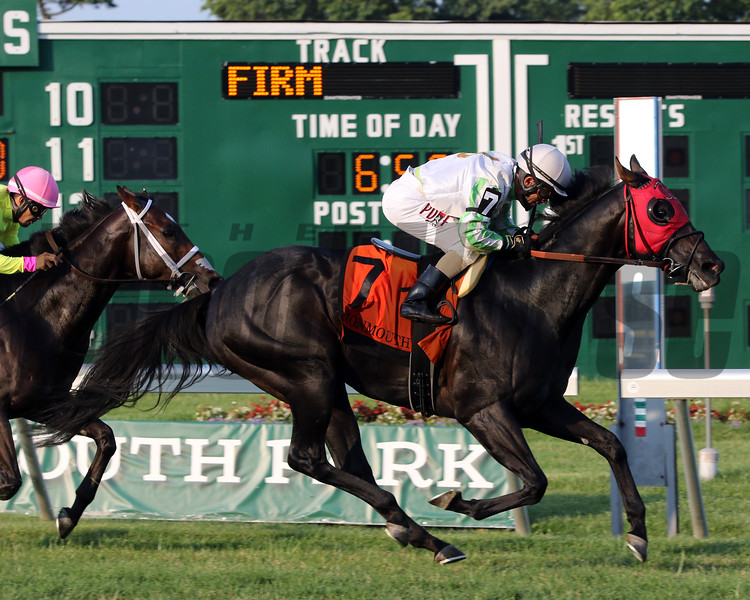 Justaholic with Jose Ferrer win the 26th Running of The Wolf Hill Stakes at Monmouth Park on July 20, 2019. Photo By: Chad B. Harmon