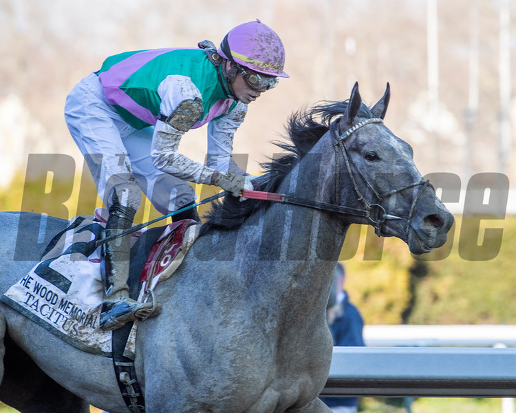 Tacitus with jockey Jose Ortiz wins the 95th running of The Wood Memorial at Aqueduct Race Track April 6, 2019 in Ozone Park, N.Y.  Photo by Skip Dickstein