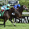 Lucullan wins the 2019 Lure Stakes at Saratoga <br /> Coglianese Photos/Chris Rahayel