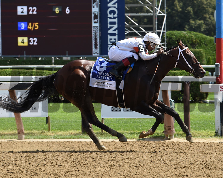 Mitole wins the 2019 Forego Stakes at Saratoga<br /> Coglianese Photos/Janet Garaguso