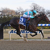Mind Control wins the 2019 Jerome Stakes at Aqueduct<br /> Coglianese Photos/Chelsea Durand