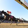 McKinzie wins the 2019 Whitney Stakes at Saratoga <br /> Coglianese Photos