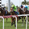 Play On wins the 2019 Melody of Colors Stakes at Gulfstream Park<br /> Coglianese Photos/Derbe Glass