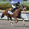 Stormy Embrace wins the 2019 Princess Rooney Stakes at Gulfstream Park  <br /> Coglianese Photos