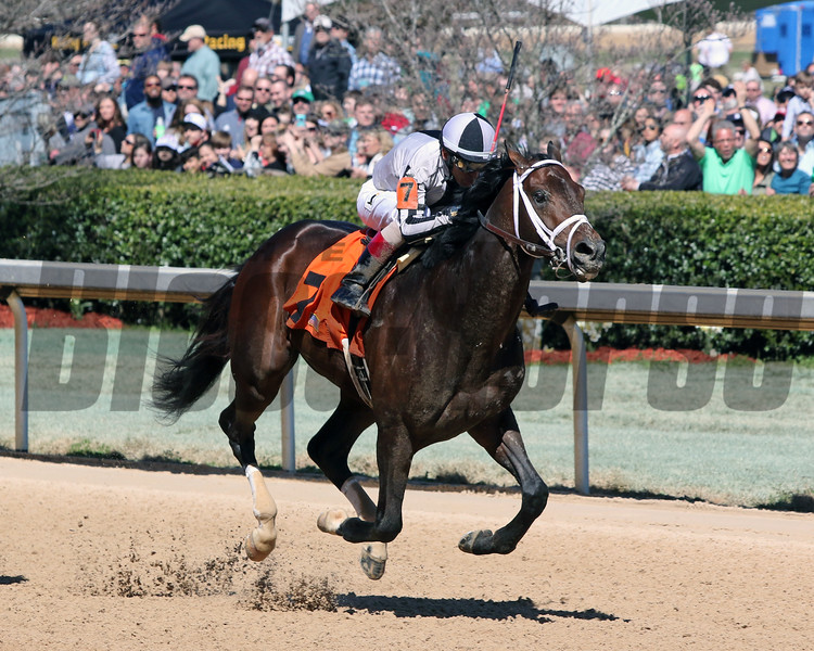 Comedian John Velazquez Oaklawn Park March 16, 2019 Photo By: Chad B. Harmon