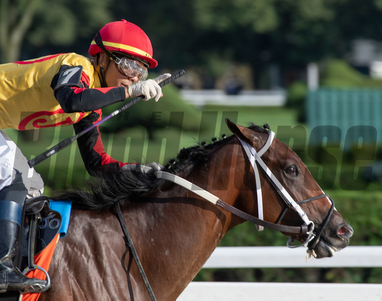 Jose Ortiz who has been crowned leading jockey for the 2019 meeting holds his index finger up showing the #1 after winning the 115th running of The Runhappy Hopeful on Basin at the Saratoga Race Course Monday Sept. 2, 2019 in Saratoga Springs, N.Y.  Photo  by Skip Dickstein