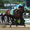 Majid wins the 2019 Easy Goer Stakes at Belmont Park<br /> Coglianese Photos
