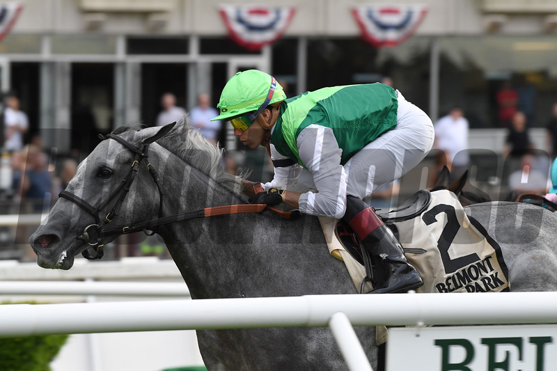 Significant Form wins the 2019 Intercontinental Stakes at Belmont Park<br /> Coglianese Photos/Chelsea Durand
