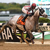 Marconi wins the 2019 Flat Out Stakes at Belmont Park<br /> Coglianese Photos