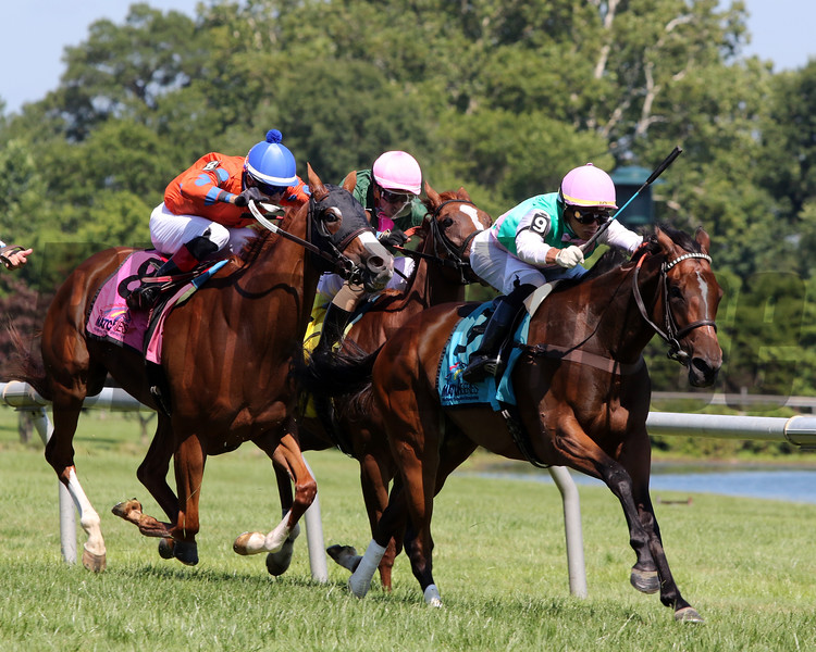 Capla Temptress with Jose Ortiz win The Just A Kiss Stakes at Delaware Park on July 13, 2019. Photo By: Chad B. Harmon
