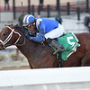 Haikal wins the 2019 Gotham Stakes at Aqueduct<br /> Coglianese Photos/Annette Jasko