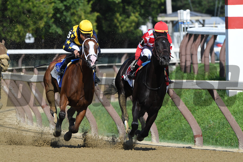 Covfefe wins the 2019  Longines Test Stakes at Saratoga<br /> Coglianese Photos/Rober Mauhar