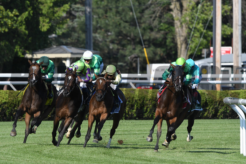 Sistercharlie wins the 2019 Diana Stakes at Saratoga<br /> Coglianese Photos/Elsa Lorieul
