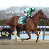 Mr. Buff wins the 2019 Jazil Stakes at Aqueduct<br /> Coglianese Photos/Elsa Lorieul