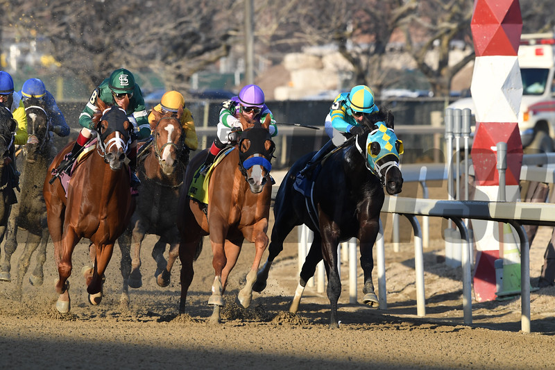 Vino Rosso wins the 2019 Stymie at Aqueduct<br /> Coglianese Photos/Robert Mauhar