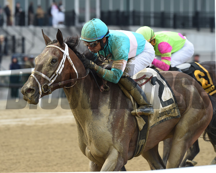 Another Broad wins the Top Flight Invitational Stakes Saturday, April 13, 2019 at Aqueduct. Photo: Coglianese Photos/Chelsea Durand