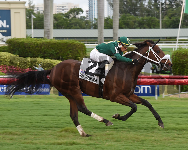 Speed Franco wins the 2017 Pulpit Stakes<br /> Coglianese Photos/Leslie Martin
