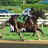 Shancelot, Emisael Jaramillo, Amsterdam Stakes, G2, Saratoga Race Course, July, 28, 2019