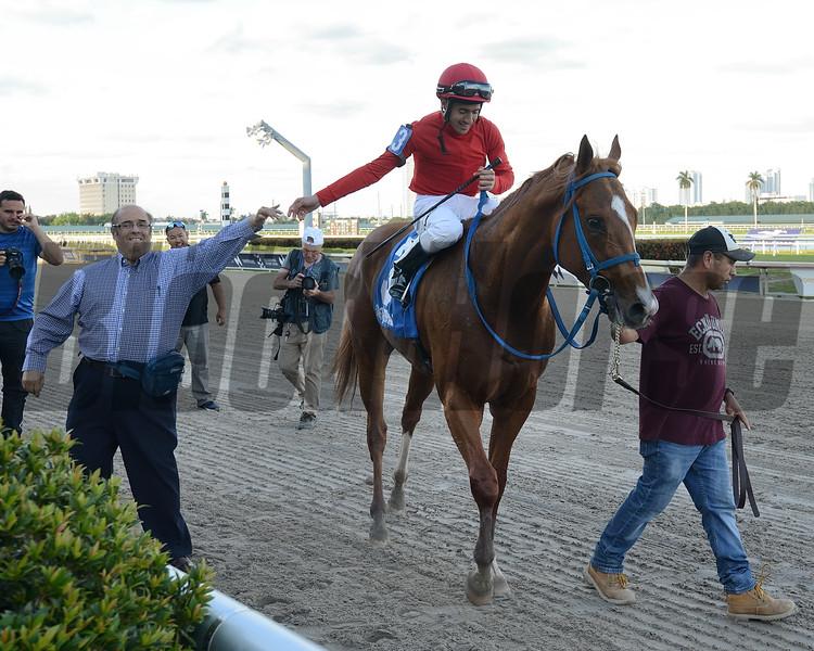Gladiator King wins 2019 Hutcheson Stakes at Gulfstream Park. Photo: Coglianese Photos/Lauren King