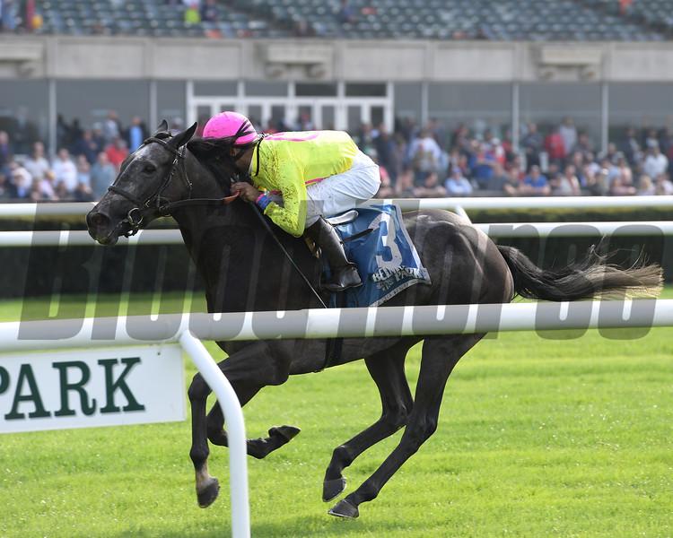 Olympico wins the 2019 Fort Marcy Stakes<br /> Photo: Coglianese Photos/Joe Labozzeta